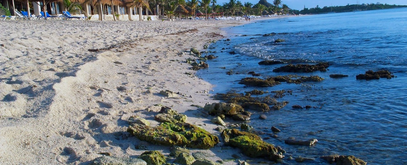 transfers-from-cancun-international-airport-to-akumal image Slider